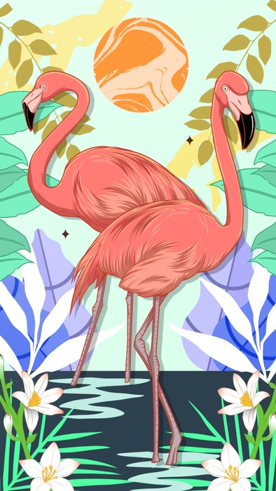 Two Flamingos standing in the water