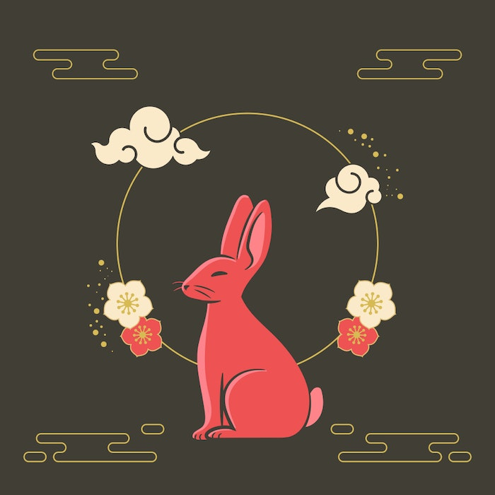 Year of the Rabbit Chinese Zodiac