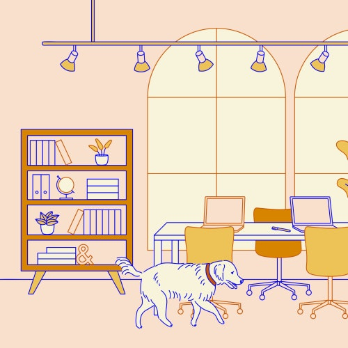 Desks in a cool co-working space with an office dog and a bicycle