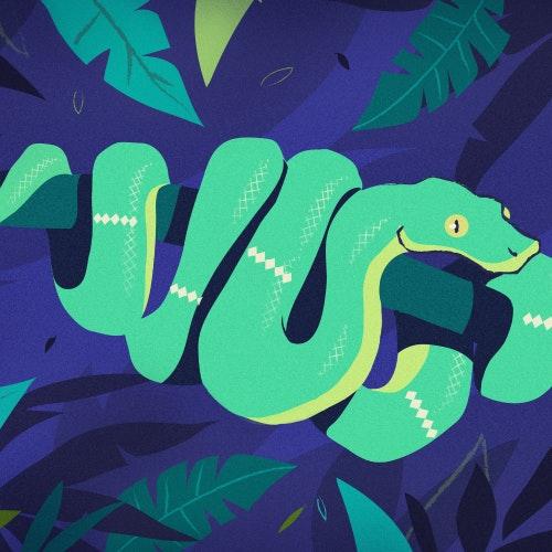 Emerald Boa snake in the jungle