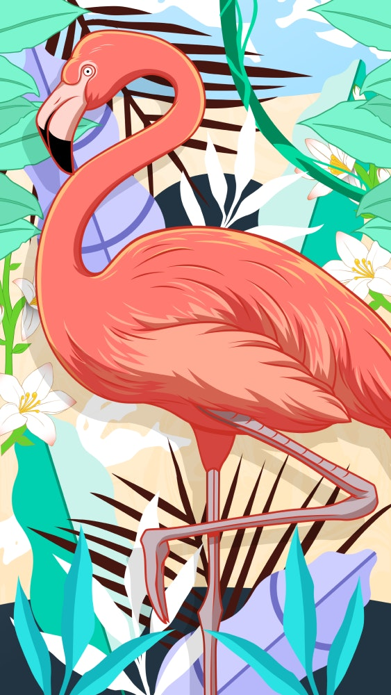 Flamingo standing on one leg