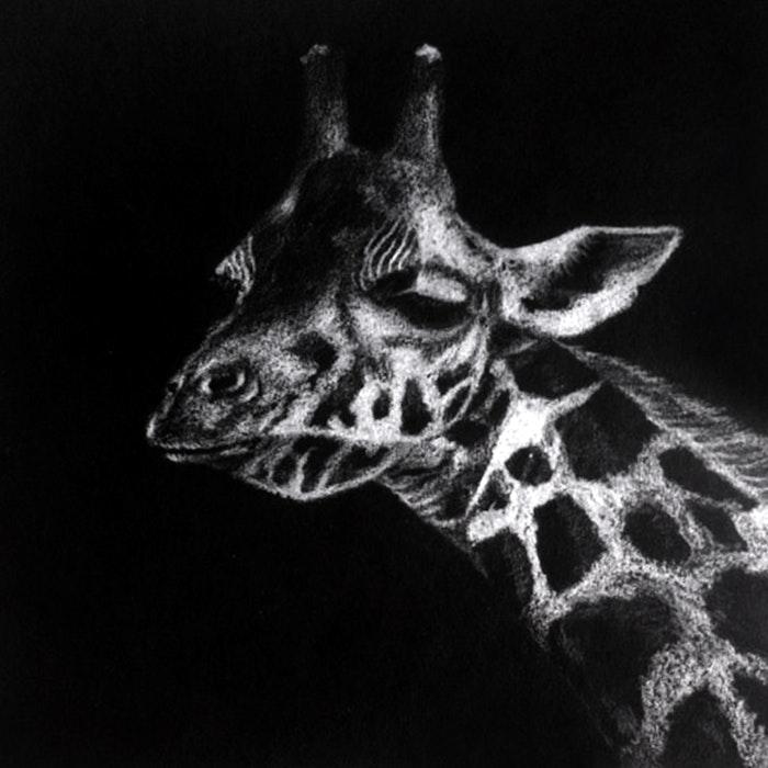 Giraffe stretching its neck