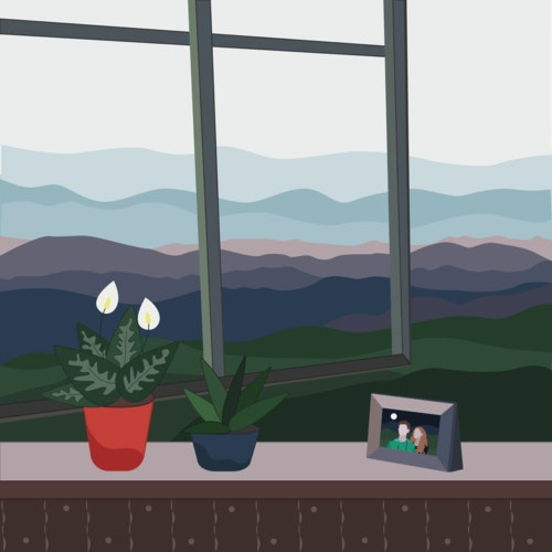 Houseplants and a framed photograph next to an open window in the countryside