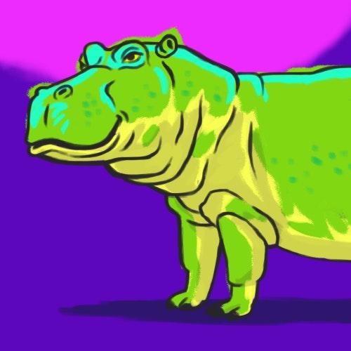 Large Hippopotamus standing alone