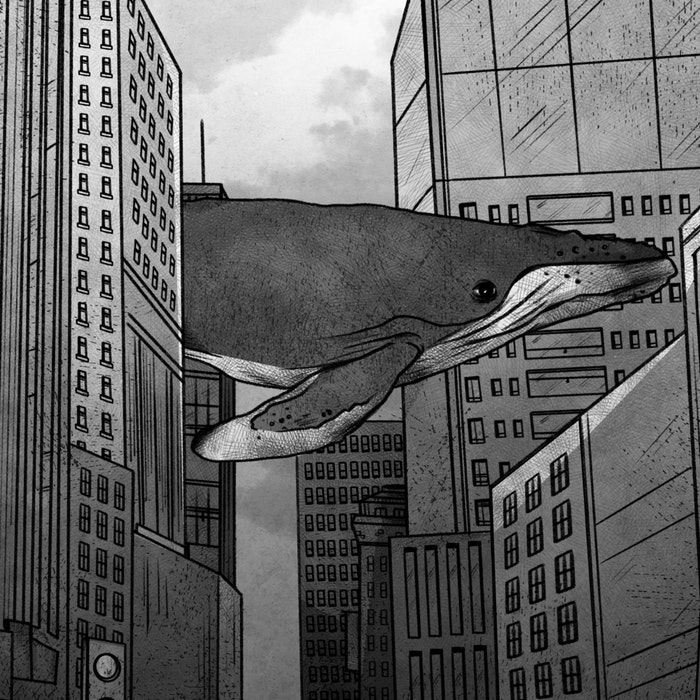 Large whale swimming through city buildings