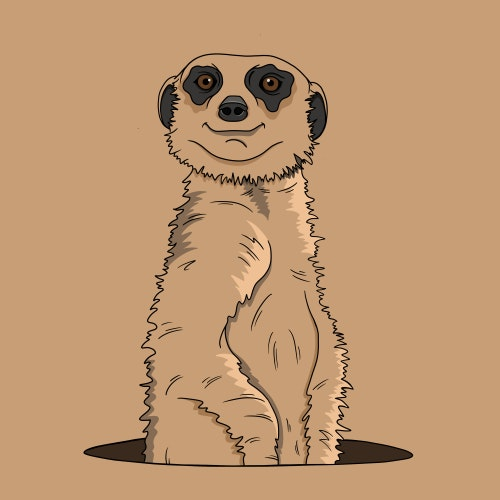 Meerkat peering out of a hole