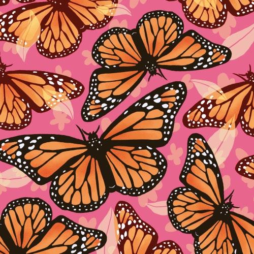 Monarch Butterflies with beautiful wings