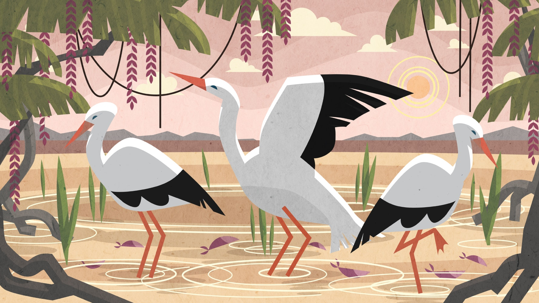 Storks standing in a lake