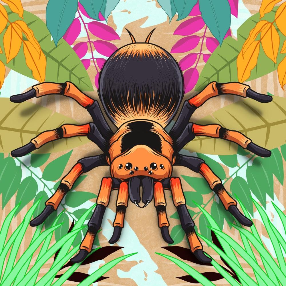 Tarantula spider in jungle folliage