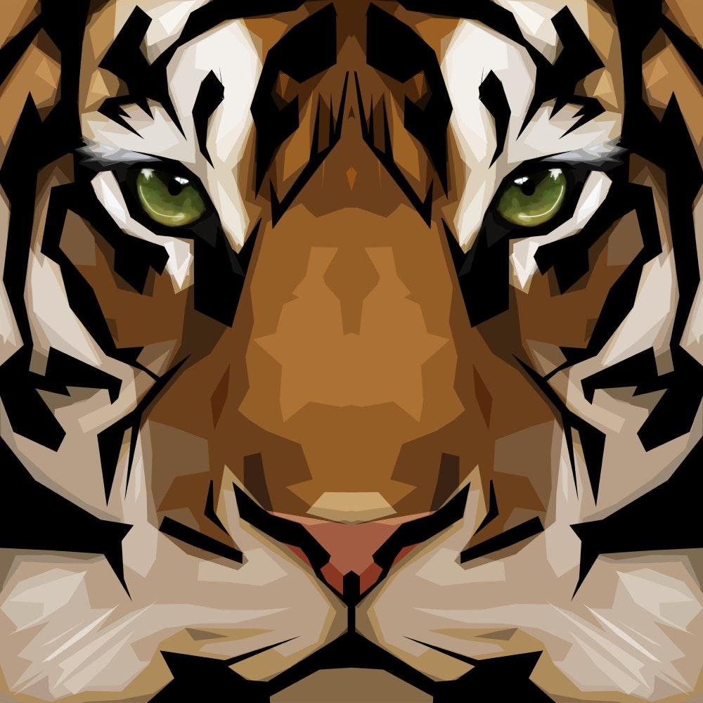 Tiger face close up