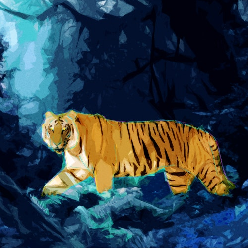 Tiger hunting in the jungle at night