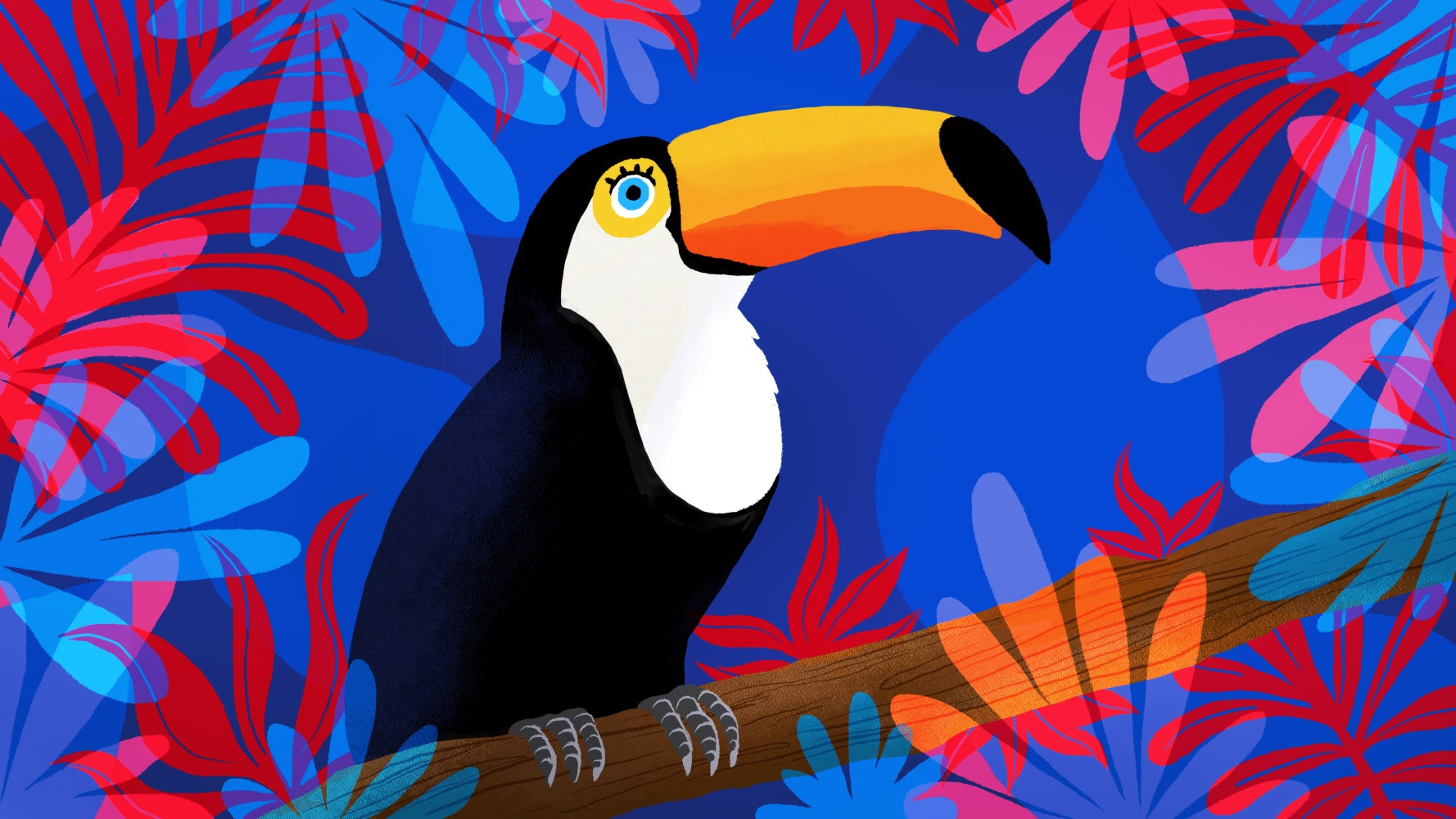 Toucan bird in the jungle