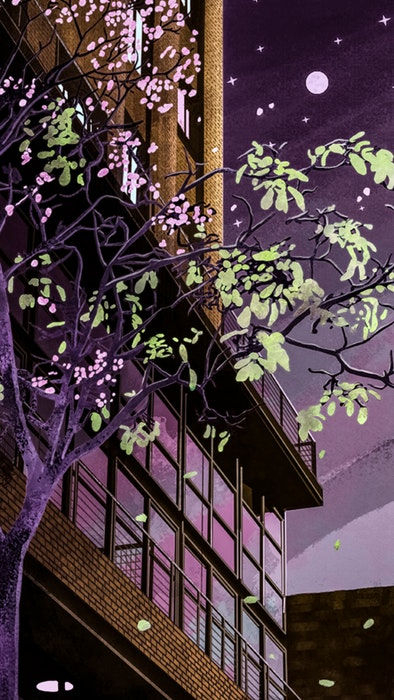 Tree with pink blossoms in front of a city building