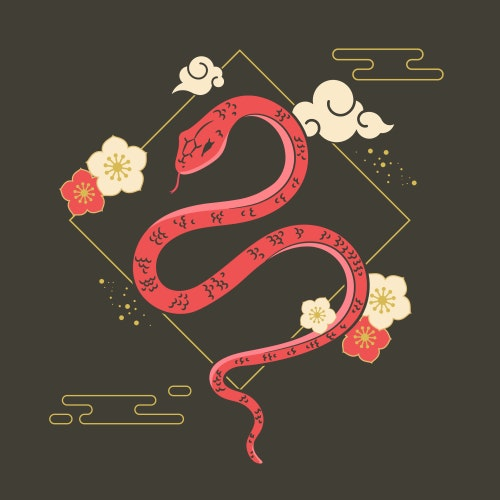 Year of the Snake Chinese Zodiac
