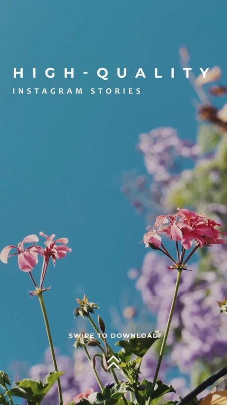 Simple Instagram Story
