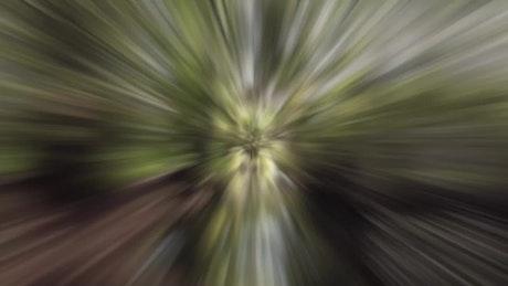 Zoom Backwards Transition
