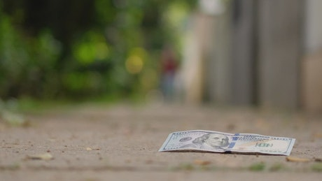 100 dollars thrown in the street collected by one person