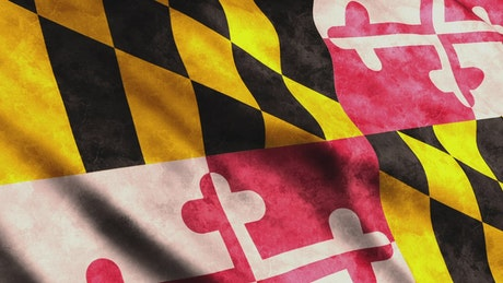 3D render of a Maryland State flag