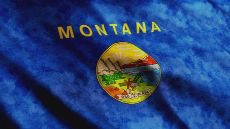 3D Render of Montana State waving flag