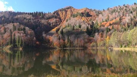 A beautiful lake and autumn forest