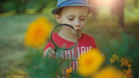 A boy uses a magnifying glass to see flowers