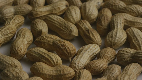 A bunch of peanuts close up