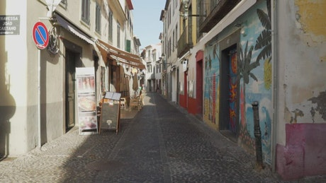 A cobbled alley with mural art