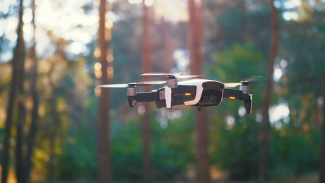 A drone hovering on a sunny day in the woods
