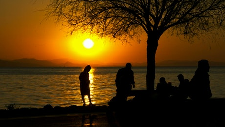 A family at the sunset on the seashore