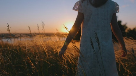 A little girl in a dress walking and caressing the grass at sunset