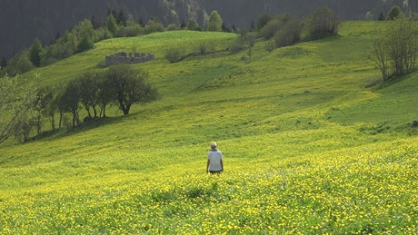 A lonely woman walk in a green valley