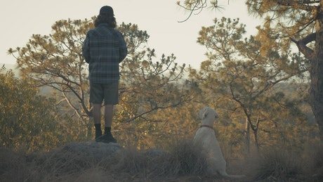 A man feeding and peting his dog at a forest