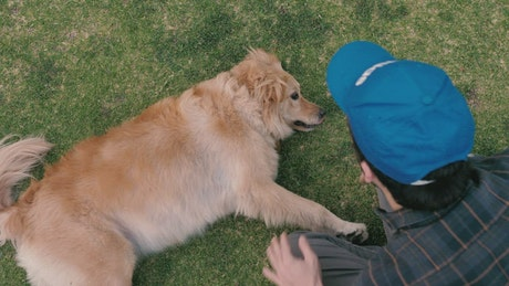 A man petting a dog in the grass