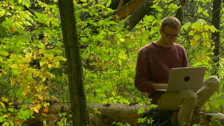 A man sitting on a log in the forest reading a book