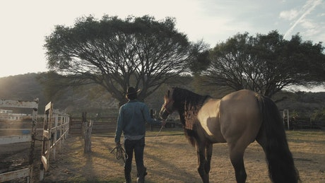 A rancher and horse at a ranch