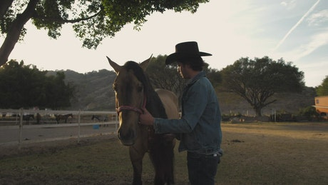 A rancher brushing horse's hair
