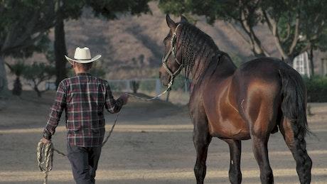 A rancher walks his horse