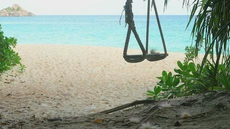 A rope swings on a tropical beach