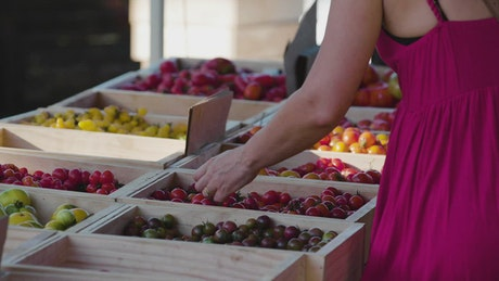 A woman choosing fruit at a market