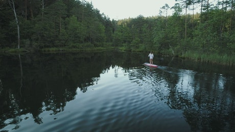 A woman on a paddle board exploring the forest