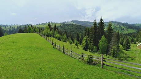 A wooden fence from a farm in the woods