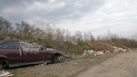 Abandoned cars left to rust in woodland