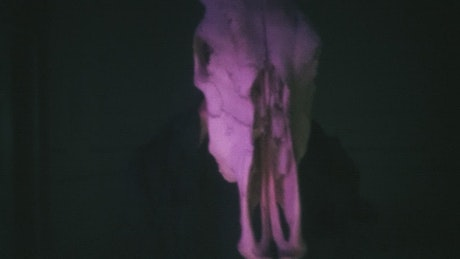 Abstract video of a person with a bull skull