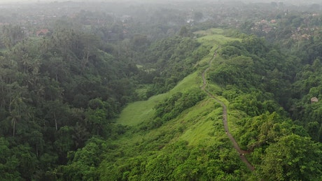 Aerial cinematic view of Indonesian jungle road