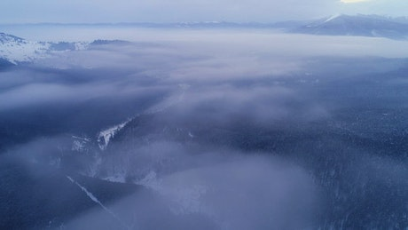 Aerial shot of a foggy winter landscape