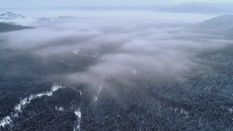 Aerial shot of a wooded area under the clouds