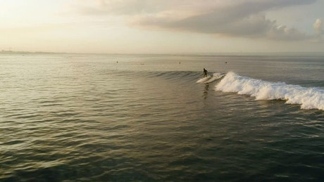 Aerial tracking shot of a man surfing on the ocean
