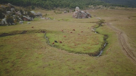 Aerial view of a green field with giant rocks
