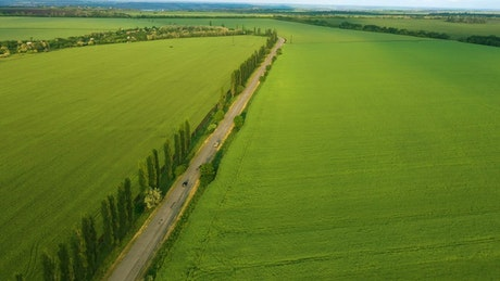 Aerial view of green fields and a road