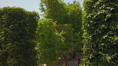 Aerial view of Paris from a large garden